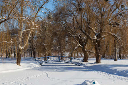 Landscape with snow-covered city park on a bright sunny winter day. Iron footbridge over a frozen river in the snow. Smila city, Ukraine