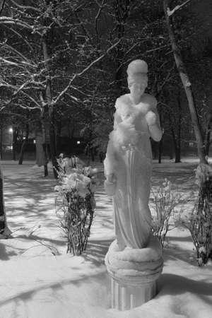 Winter night in the snowy old park. Snow covered white statue among snowy trees. Winter cityscape. Black and white photo. Location: Smila city, Ukraine