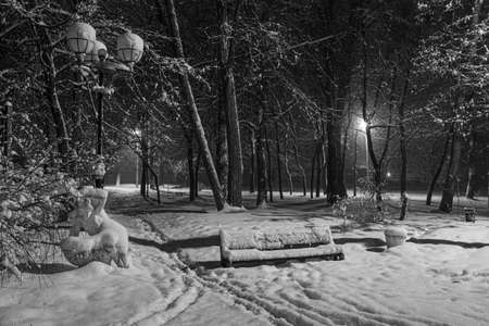 Winter night in the snowy old park. Snow covered bench among snowy trees. Winter cityscape. Black and white photo. Location: Smila city, Ukraine Standard-Bild