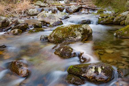Mountain creek. Water among mossy stones close-up. Beautiful mountain river landscape Standard-Bild