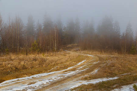 Early spring in the Carpathians. Mountain slopes with trees in the fog. Dirt road in the snow. Beautiful nature in the mountains. Ukraine