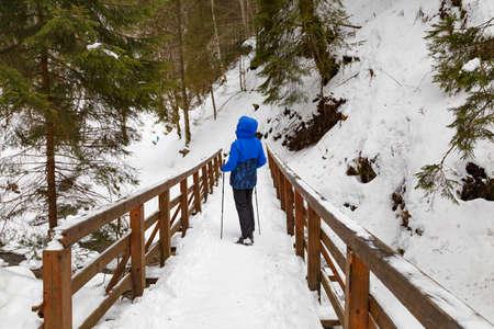 Woman - hiker on pedestrian wooden bridge in snowy mountain gorge at winter. Location: Zhenetskyi (Zhenetsʹkyy) Huk waterfall, Carpathian National Park, Ukraine.
