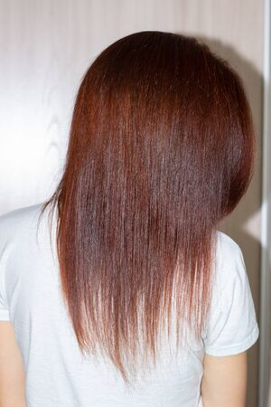 Womans long straight chestnut hair. Smooth long hair. Stockfoto
