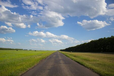 A road in a green field in rural Siberia. Beautiful country landscape