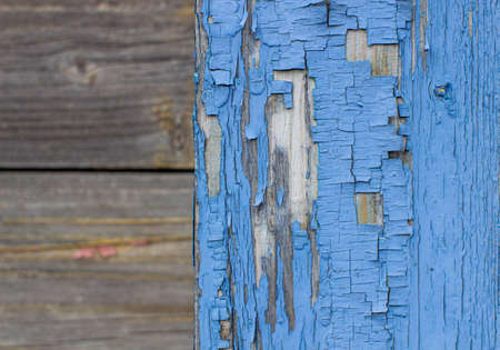 Blue old paint on the Board. Wooden background made of old boards. The texture of an old rustic wooden fence made of flat processed boards. Background design