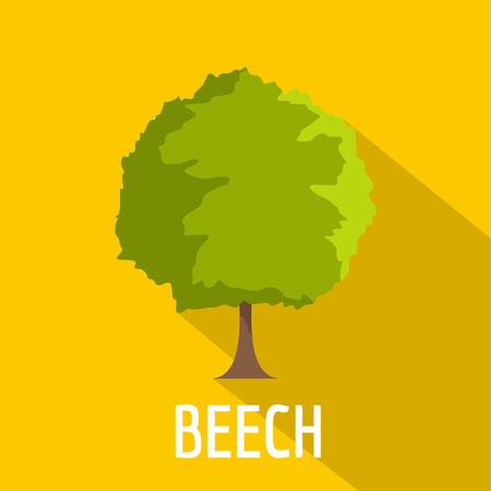 Beech tree icon. Flat illustration of beech tree vector icon for web