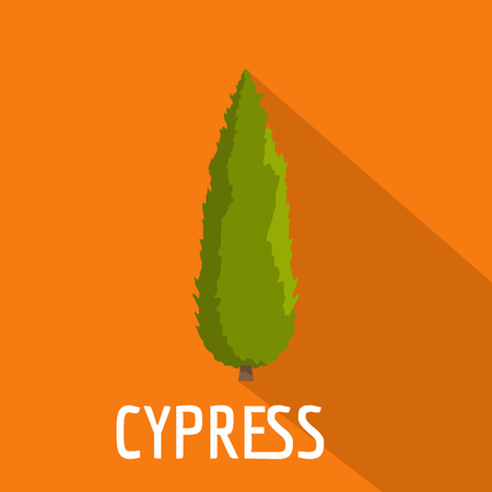Cypress tree icon. Flat illustration of cypress tree icon for web.