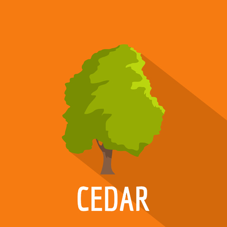Cedar tree icon. Flat illustration of cedar tree icon for web.