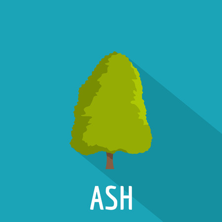 Ash tree icon. Flat illustration of ash tree icon for web. Vettoriali