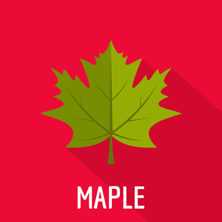 Maple leaf icon. Flat illustration of maple leaf icon for web.