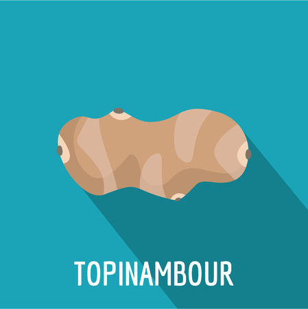 Topinambour icon. Flat illustration of topinambour vector icon for web