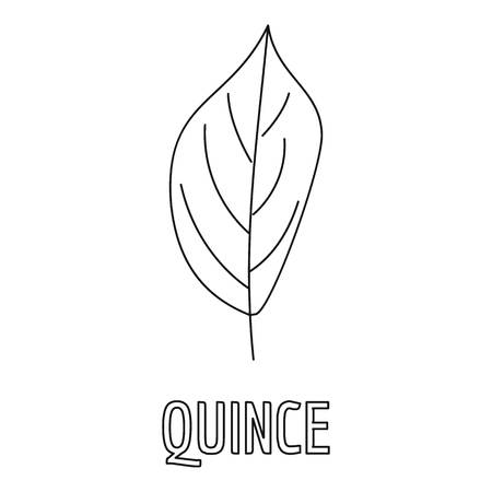 Quince leaf icon. Outline illustration of quince leaf vector icon for web.