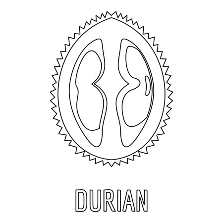 Durian icon. Outline illustration of durian vector icon for web Ilustração