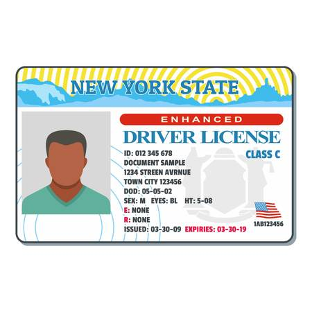 Driving license for new york icon. Flat illustration of driving license for new york vector icon for web. Vettoriali