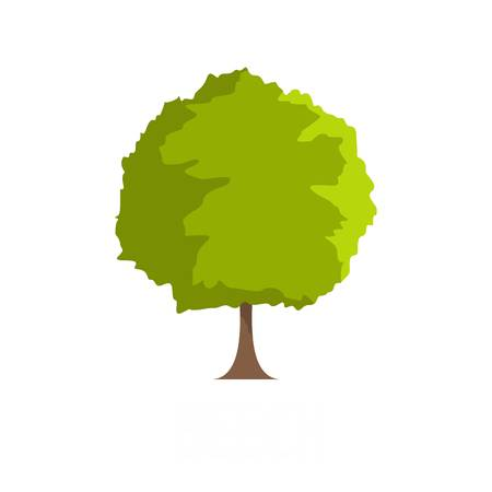 Beech tree icon. Flat illustration of beech tree vector icon isolated on white background Illustration