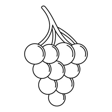 Cluster grape icon. Outline illustration of cluster grape vector icon for web