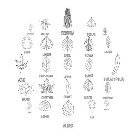 Leaf icons set. Outline illustration of leaf vector icons for web