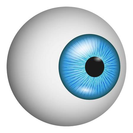 Eye anatomy icon. Realistic illustration of eye anatomy vector icon for web