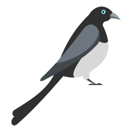 Big magpie icon. Flat illustration of big magpie vector icon for web 向量圖像