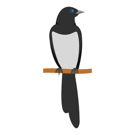 Sitting magpie icon. Flat illustration of sitting magpie vector icon for web