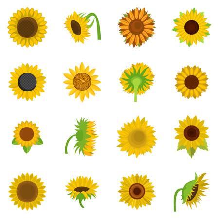 Flat illustration of sunflower blossom icons isolated on white