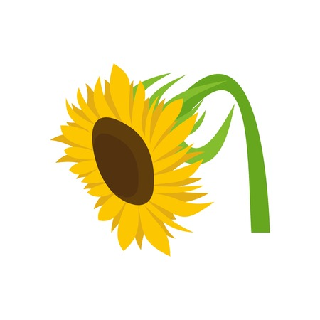 Beautiful sunflower icon