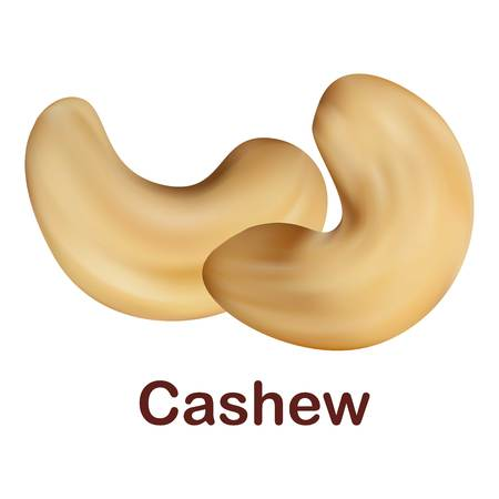 Cashew icon. Realistic illustration of cashew vector icon for web design isolated on white background