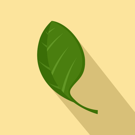 Spinach leaf icon. Flat illustration of spinach leaf vector icon for web design