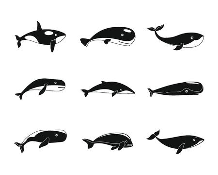 Whale blue tale fish icons set. Simple illustration of 9 whale blue tale fish vector icons for web Illustration