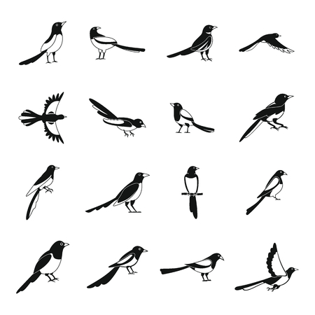 Magpie crow bird icons set. Simple illustration of 16 magpie crow bird vector icons for web Illustration