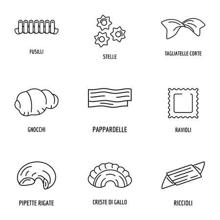 Cheese icons set. Outline set of 9 cheese vector icons for web isolated on white background