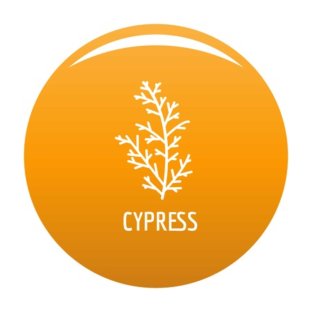 Cypress leaf icon. Simple illustration of cypress leaf vector icon for any design orange