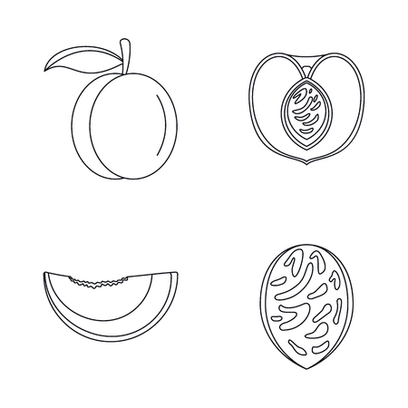 Peach tree slices fruit icons set, outline style