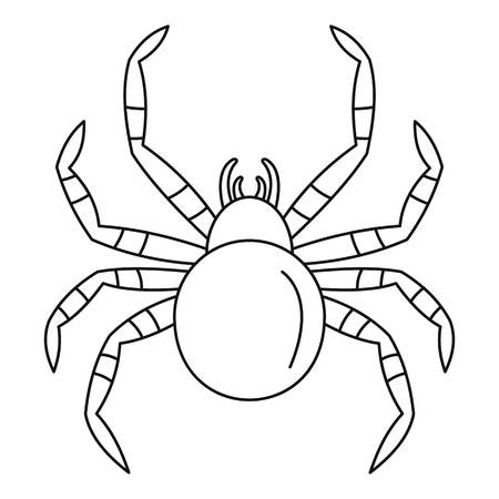 Tarantum spider icon, outline style
