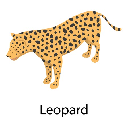 Leopard icon, isometric style