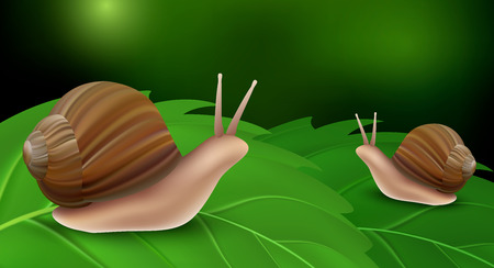Snail on leaves concept background, realistic style