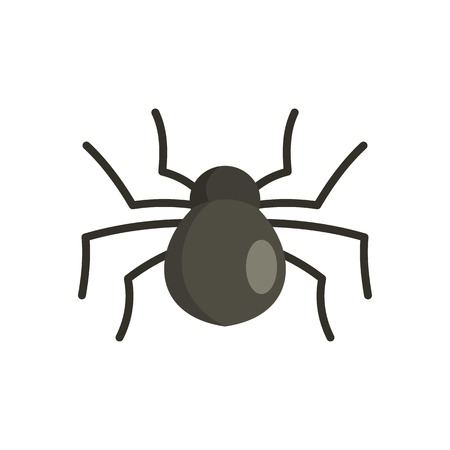Female mouse spider icon. Flat illustration of female mouse spider vector icon for web isolated on white