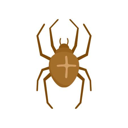 Cross spider icon. Flat illustration of cross spider vector icon for web isolated on white