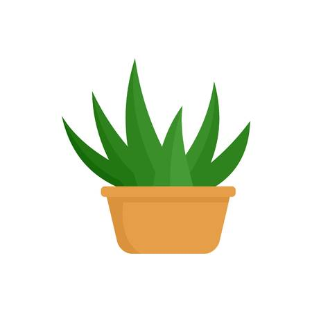 Aloe room plant icon. Flat illustration of aloe room plant vector icon for web isolated on white