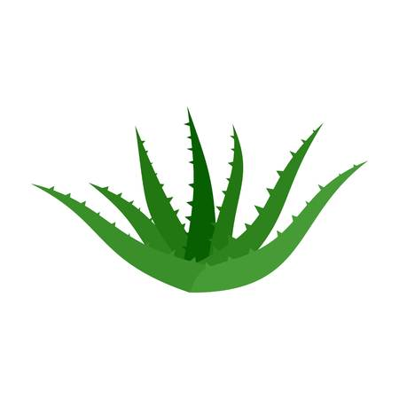 Aloe vera icon. Flat illustration of aloe vera vector icon for web isolated on white Ilustração