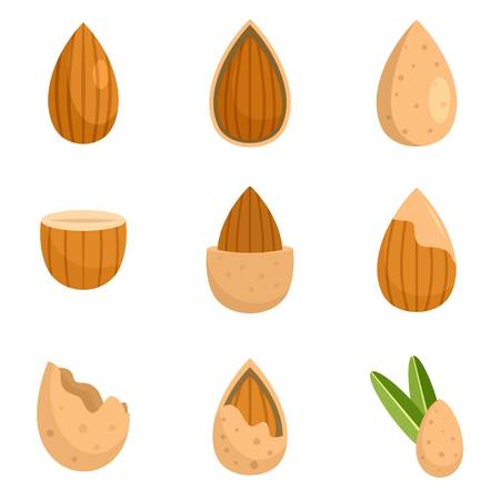 Almond walnut oil seed icons set flat style Stock Illustratie