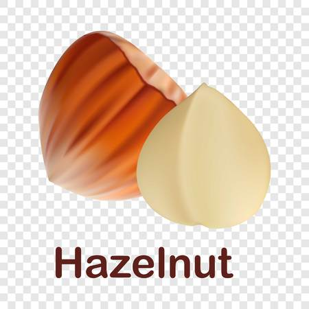Hazelnut icon. Realistic illustration of hazelnut vector icon for on transparent background