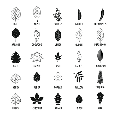 Leaf icons set, simple style