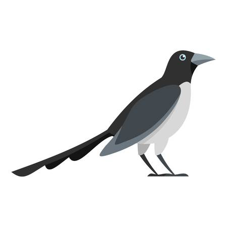 Looking magpie icon. Flat illustration of looking magpie icon for web Stock Photo