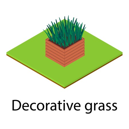 Decorative grass icon. Isometric illustration of decorative grass icon for web