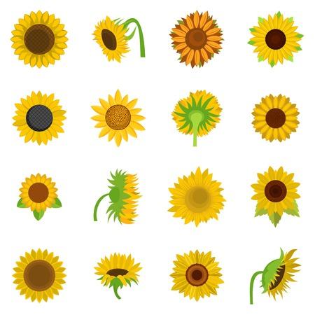 Sunflower blossom icons set isolated