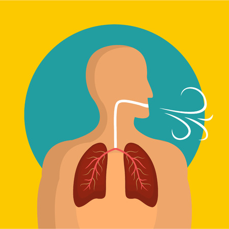 Breathing lungs icon, flat style