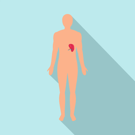 Front view of human spleen icon. Flat illustration of front view of human spleen icon for web design