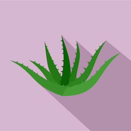 Aloe vera icon. Flat illustration of aloe vera icon for web design