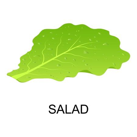 Salad icon, isometric style